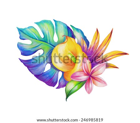 abstract tropical leaves and flowers, jungle plants, watercolor illustration isolated on white background - stock photo