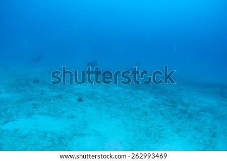 Abstract underwater scene, Palawan, Philippines. - stock photo
