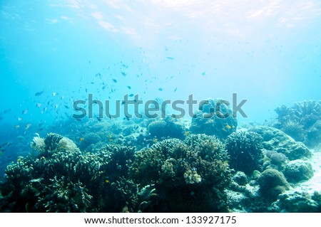 abstract underwater scene sun rays in deep blue sea - stock photo