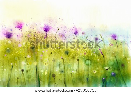 Abstract watercolor painting purple cosmos flowers and white wildflower. Wild flowers meadow, green field paintings. Hand painted floral, flower in meadows. Spring flower seasonal nature background - stock photo