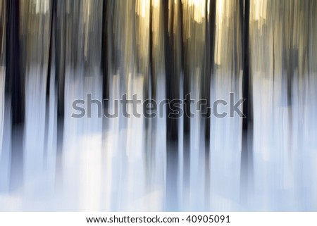 Abstract winter forest scene, intentional vertical blur done in-camera. - stock photo