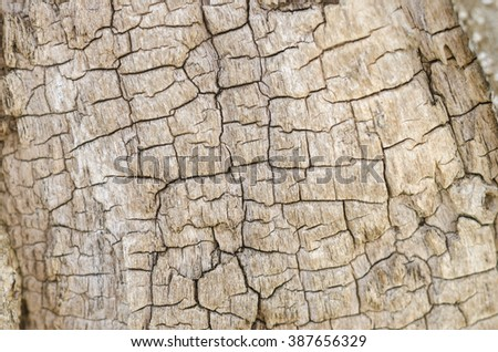 Abstract wooden texture background.
