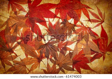 abstract yellow grunge autumn background for multiple uses - stock photo