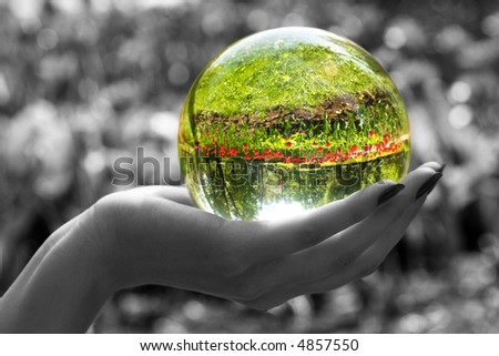 Abstraction. The glass sphere lays on a palm. The turned bright garden with tulips is visible in sphere. All rest - is decoloured and blur. - stock photo