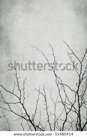 acanthaceous branch isolated on vintage background - stock photo