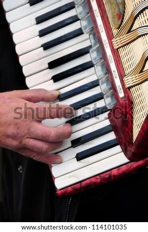 Accordion player - stock photo