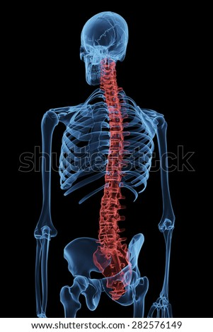 Aching spine with back pain marked red in x-ray image (3D Rendering)