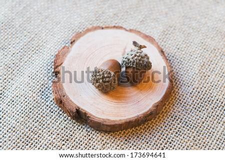 Acorn on wood  - stock photo