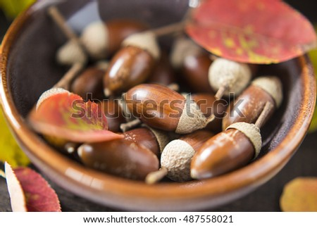 Acorns and autumn leave in a purple pottery