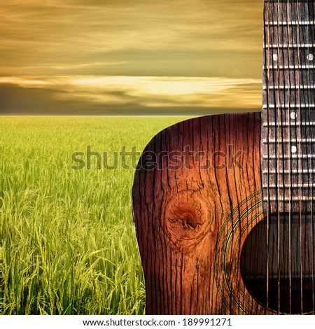 Acoustic guitar with paddy rice field background - stock photo