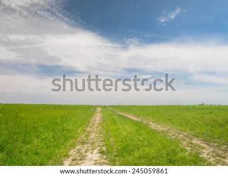 Acres Wild Road and Nobody  - stock photo