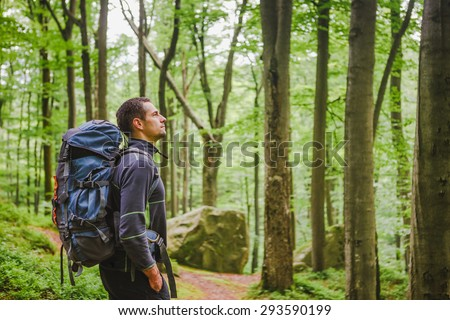 Active healthy man hiking in beautiful forest - stock photo