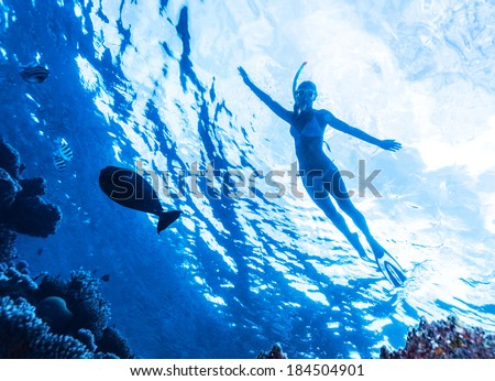 Active woman diving in the sea and enjoying wild nature, swimming underwater and consider different fishes, extreme sport, luxury summer vacation concept - stock photo