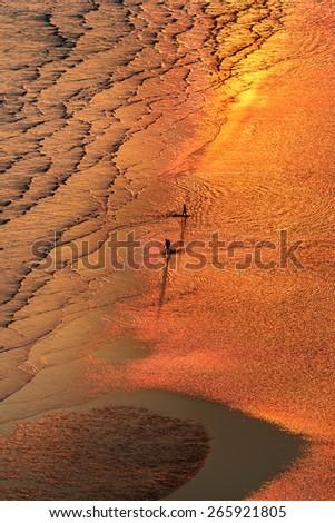 activity on the sunset beach - stock photo