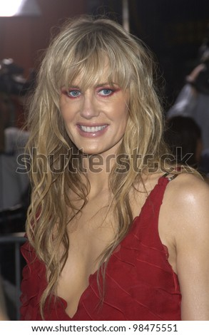 Actress DARYL HANNAH at the Los Angeles premiere of her new movie Kill Bill. Sept 29, 2003  Paul Smith / Featureflash