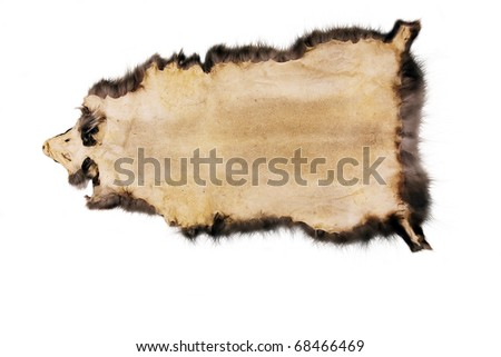 actual leather sample, skin isolated on white - stock photo