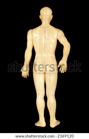 acupuncture points on human back isolated on black background - stock photo