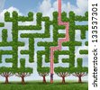 Adapt to change and finding creative solutions to difficult growing challenges as a group of trees as a maze or labyrinth and a businessman climbing a red ladder shaped as the solution to success. - stock photo