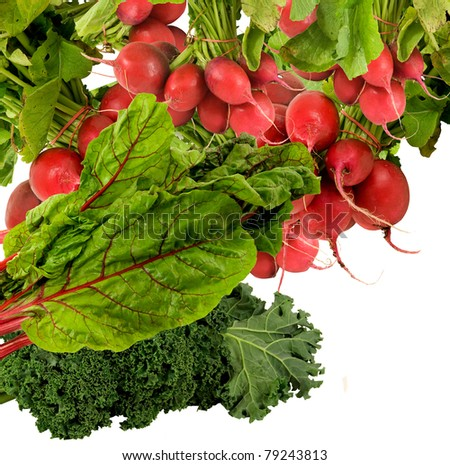 add some crunchy red radishes to the green kale and swiss chard-on a white background - stock photo