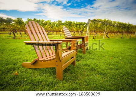 Adirondack style chair on lawn of vineyard - stock photo