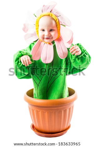 Adorable baby boy dressed in flower costume on white background - stock photo