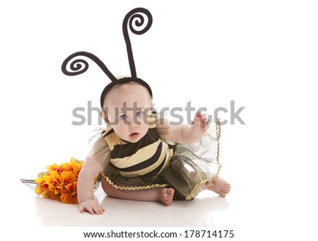 Adorable baby girl dressed up as a bumble bee.  Isolated on white. - stock photo