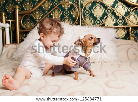 adorable boy playing with  yorkshire terrier dog at home