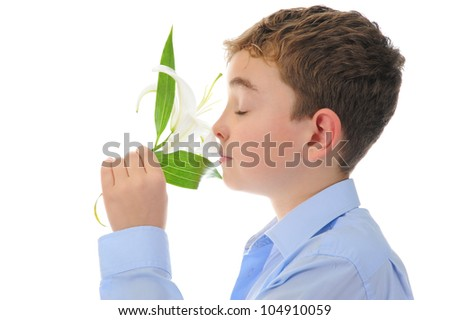 adorable boy with flowers. Isolated on white background - stock photo