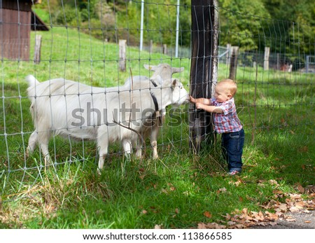 adorable child is cuddling a goat through the fence