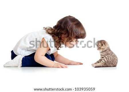 adorable child looking at small funny cat