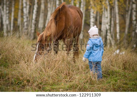 Adorable girl in blue jacket near brown horse in park