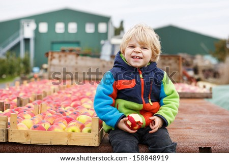 Adorable little boy of two years eating red apples in an orchard on tractor - stock photo