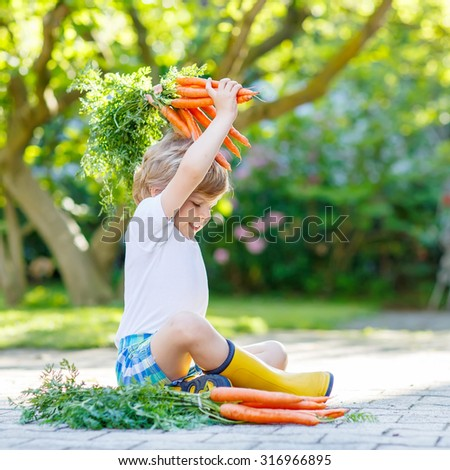 Adorable little child with carrots in domestic garden. Kid gardening and eating outdoors. Healthy organic vegetables for kids - stock photo