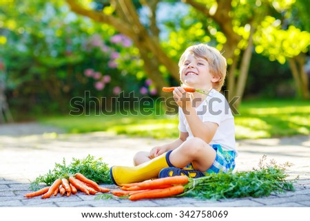 Adorable little child with carrots in domestic garden. Kid gardening and eating outdoors. Healthy organic vegetables as snack for kids and kindergarten children - stock photo