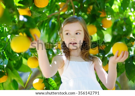 Adorable little girl picking fresh ripe oranges in sunny orange tree garden in Italy - stock photo