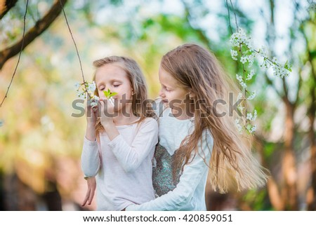 Adorable little girls in blooming cherry tree garden on spring day