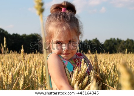 Adorable preschooler girl walking happily in wheat field on warm and sunny summer day, outdoors - stock photo