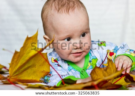 Adorable smiling baby boy playing with autumn maple leaves - stock photo