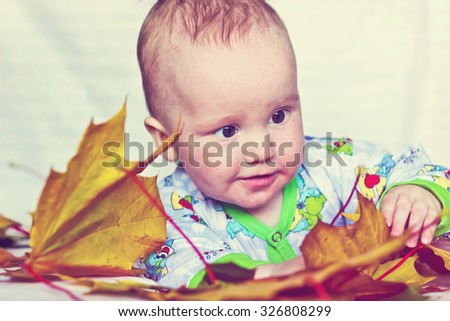 Adorable smiling baby boy playing with autumn maple leaves. Image with vintage filter - stock photo