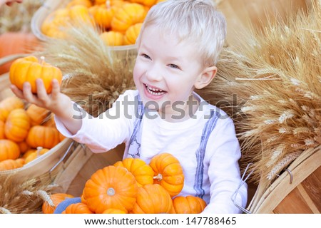 adorable smiling boy holding small pumpkin at the pumpkin patch