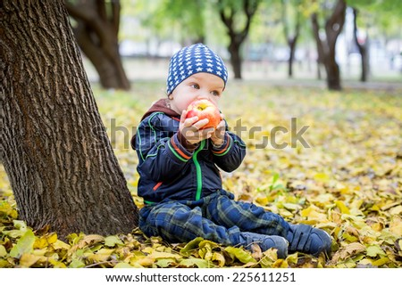 Adorable toddler boy  eating fresh red apple in autumn park - stock photo