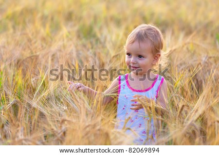 Adorable two-year old baby walking in the field of wheat - stock photo
