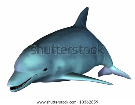 Adorable undersea dolphin isolated on white - stock photo