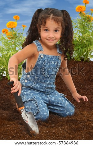 Adorable 3 year old mixed race girl working in a marigold garden. - stock photo