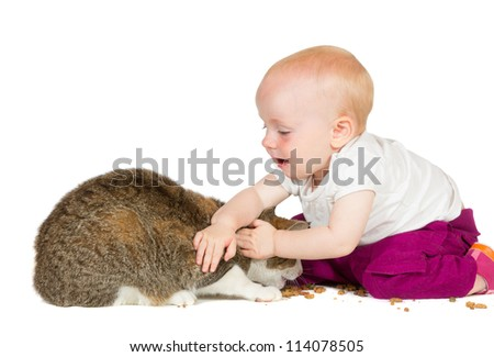 Adorable young baby playing with the family cat stroking and petting it learning to be unafraid of animals - stock photo