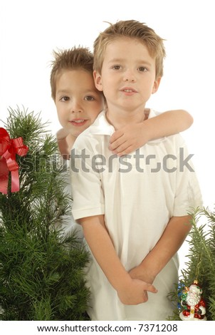 Adorable young boys standing in front of miniature Christmas trees; season portrait shot on white - stock photo