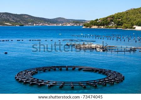 Adriatic Sea Business - stock photo