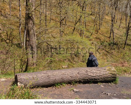 Adult Female Sitting on a Tree Trunk in a Clearing next to the River Teign close to Fingle Bridge on Dartmoor National Park in Devon, England, UK - stock photo
