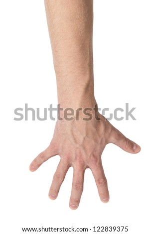 adult male hand showing, isolated on white - stock photo