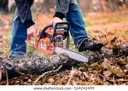 Adult man cutting trees with chainsaw and tools - stock photo